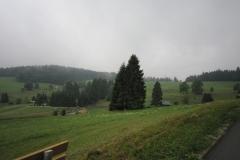 2010-Schwarzwald-015